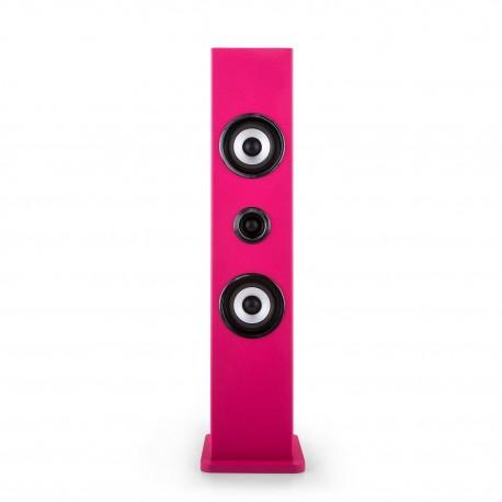Колонка для караоке Auna Karaboom Bluetooth USB AUX FM