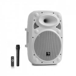 Мобильная акустическая система Auna Streetstar 10