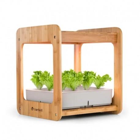 Контейнер для растений blumfeldt Urban Bamboo Indoor Garden